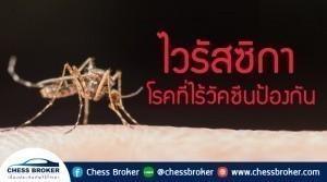 ⭐️ ไวรัสซิกา  โรคที่ไร้วัคซีนป้องกัน ⭐️